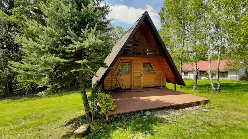 Ustronny, drewniany domek nad Dunajcem