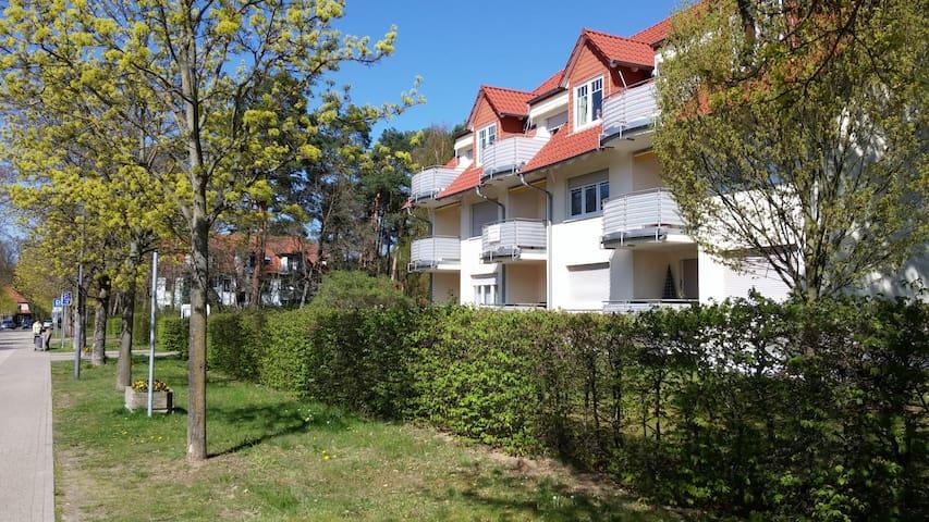Traumhafte Ferienwohnung Bad Saarow! Schönste Ecke
