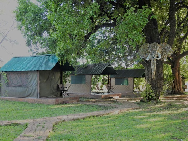THORN TREE TENTED CHALET.2