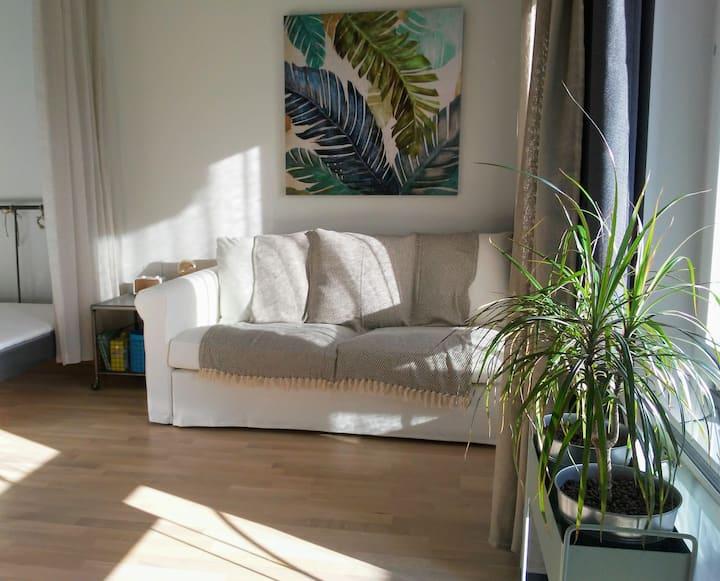 Room 80B Monthly Rental