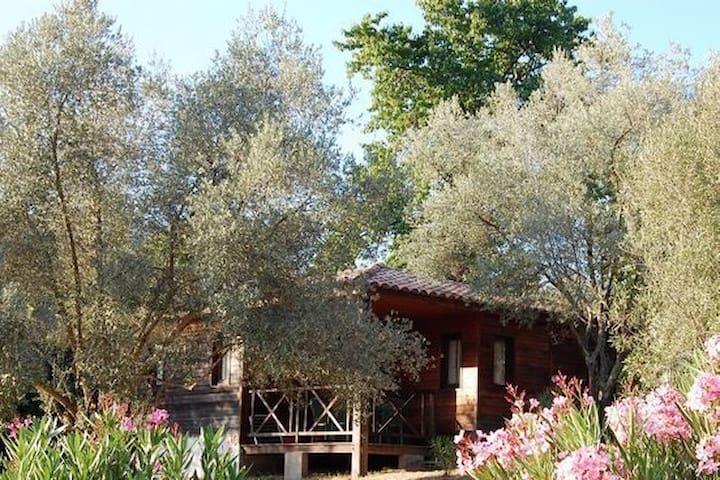 Gîtes Grosseto-Prugna au Calme - Corse du Sud