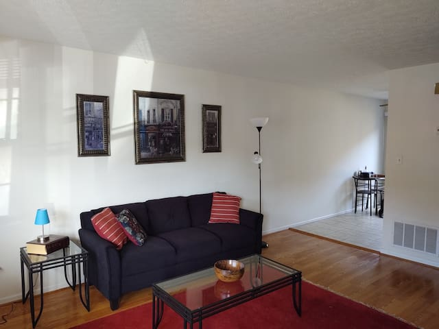 New Spacious Townhouse in the Center of Lynchburg