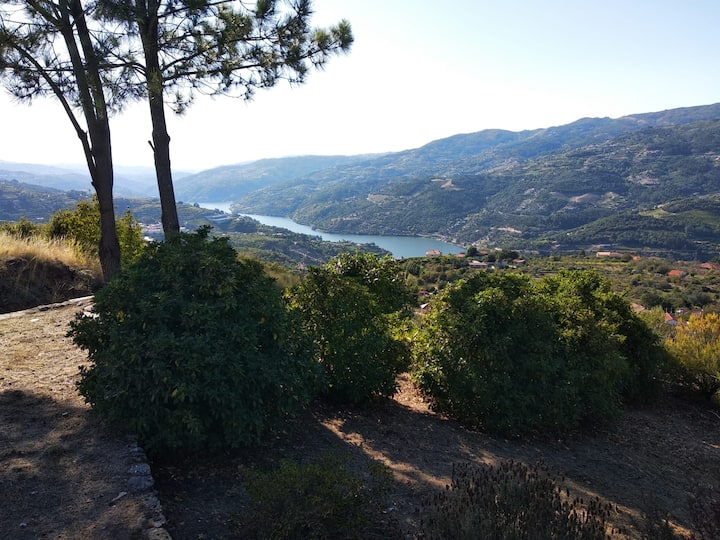 Paraíso Hills: tranquility in the Douro Valley