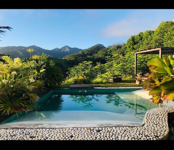 Travel Room - Te Fiti island Break