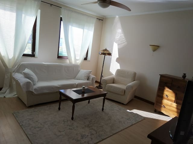Quiet, spacious, bright, downtown apartment