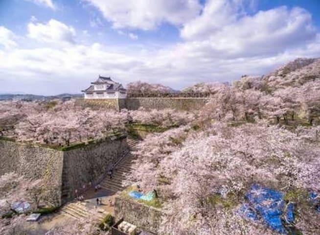 駐車場完備。広々スペースでゆっくりくつろげます 近くに鶴山公園あります - Tsuyama - Dům