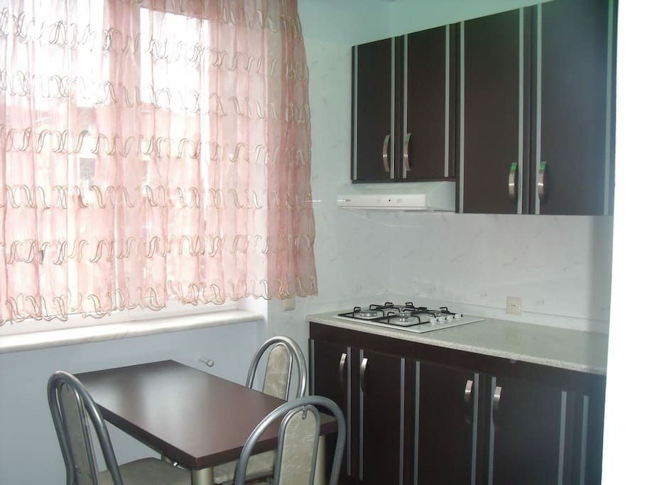 Kitchen with Gas, Fridge, kitchen table and chairs