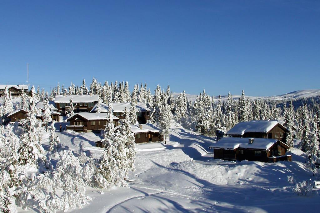 Fullt utstyrt hytte ved Valdres Alpinsenter og Aurdal Fjellpark. Direkte tilgang til stort løypenett for langrenn.