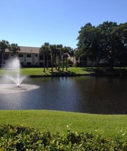 A Dream Vacation in Sarasota, FL