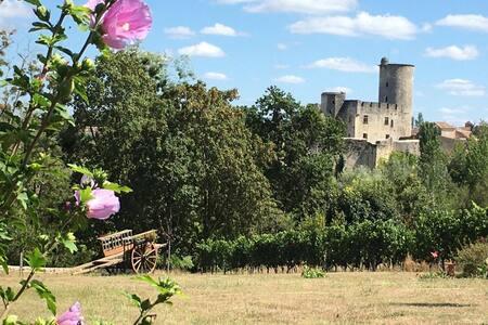 Belle chambre dans vignoble face château médiéval