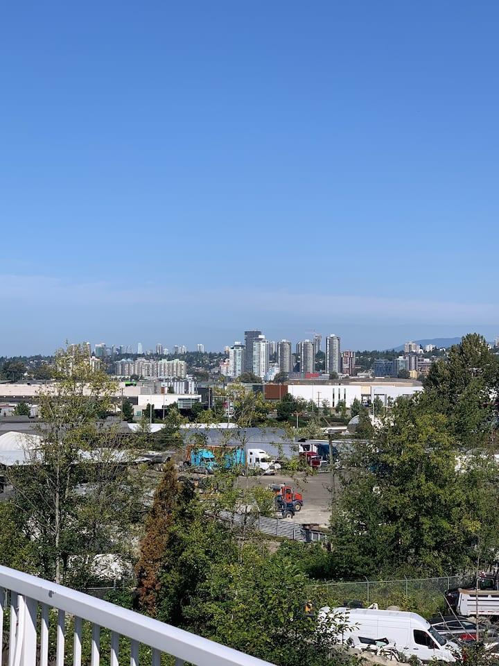 180 degree Panoramic view