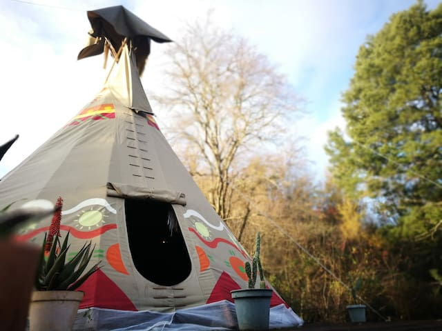 Magical Teepee Experience on our Rescue Farm!