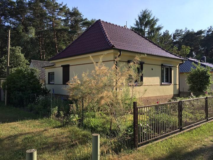 Haus am Wald - Ruhe und Entspannung in der Natur