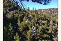 Navitat Zipline Photo credit: https://www.skyscanner.com/trip/wrightwood-ca/things-to-do/ziplines-at-pacific-crest