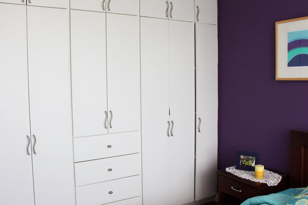Large Closet and Drawers