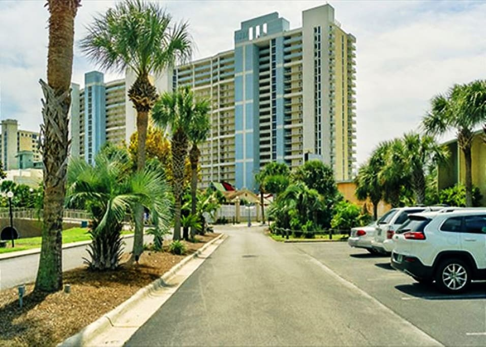 Building,Palm Tree,Tree,Hotel,Downtown