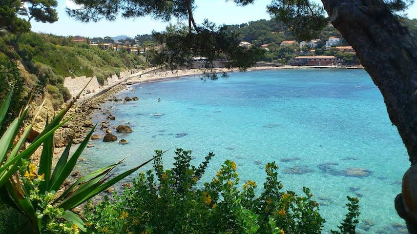 Villas To Rent In Sanary Sur Mer