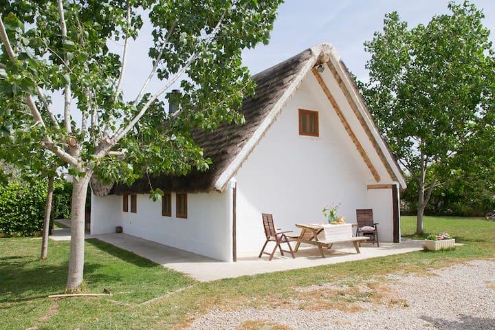Authentic barrack with pool - BB - Sant Jaume d'Enveja - Dom