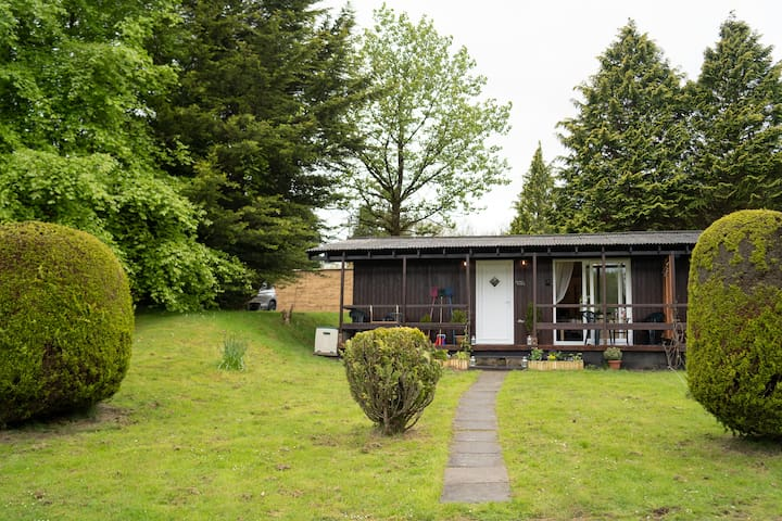 Catkin Lodge set in a Beautiful 24 acre Woodland Holiday Park