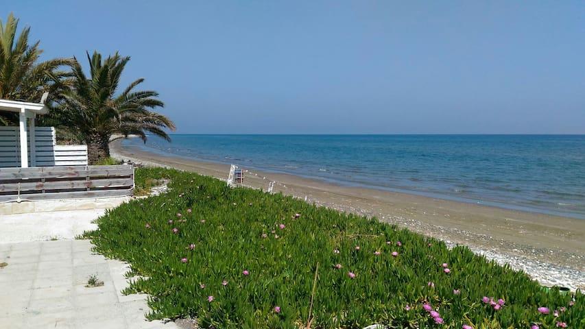 Удивительный дом на берегу моря - Meneou - Hus