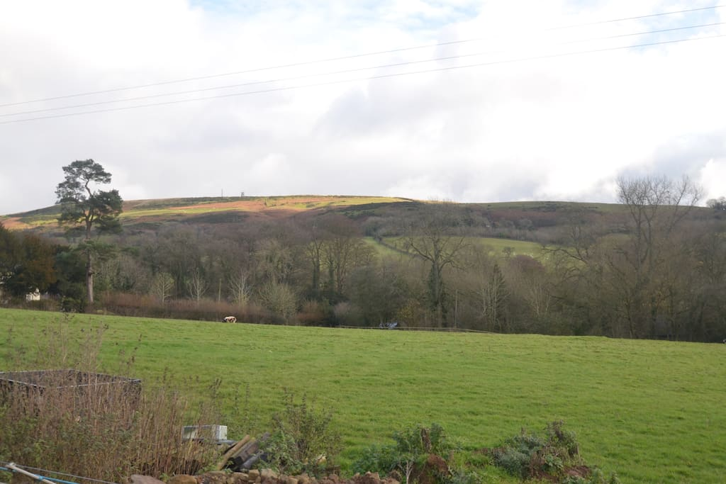 View over Brown Clee