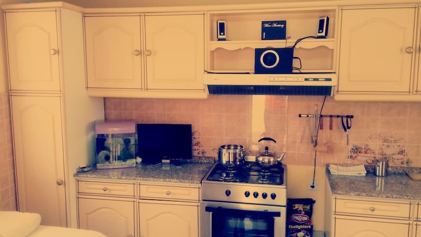 Private use of cooker/oven in same room. Laptop Screen extender and small sound system. Aquarium on the left.