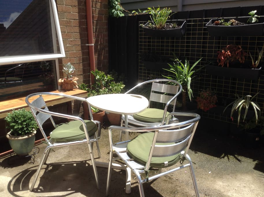 Our sunny courtyard with vertical garden