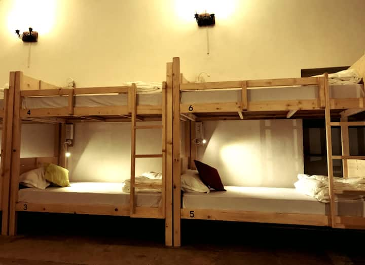 Bed in 8-Bed Mixed Dorm in Cohostel, Calangute