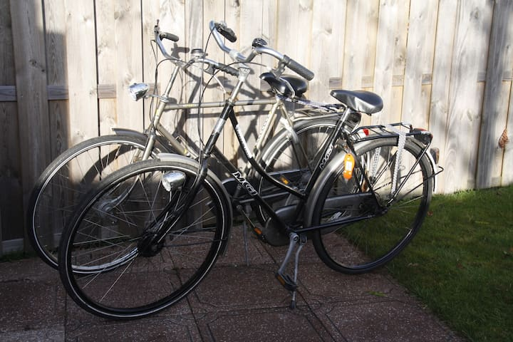 Two bike available for rent