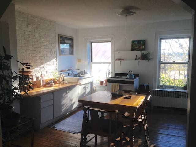 Cozy Sunny Brooklyn 2BD - Brooklyn - Appartement