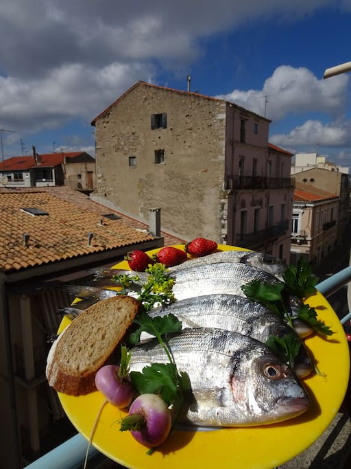 La pêche à portée d'assiette