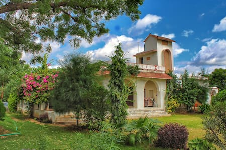 India's best farmstay in Rustic Rajasthan