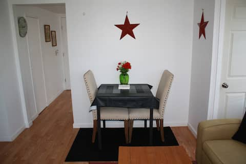 Comfy Brownwood Apt near town and University