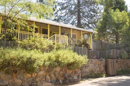 Fivespot Cabin: natural art retreat