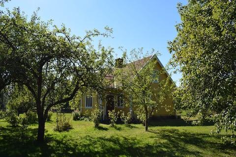 Hus i fruktträdgård