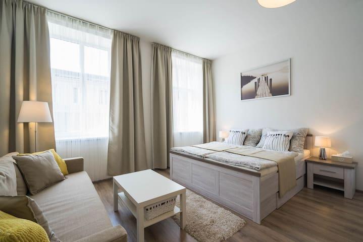 Cozy apartment near center of Brno