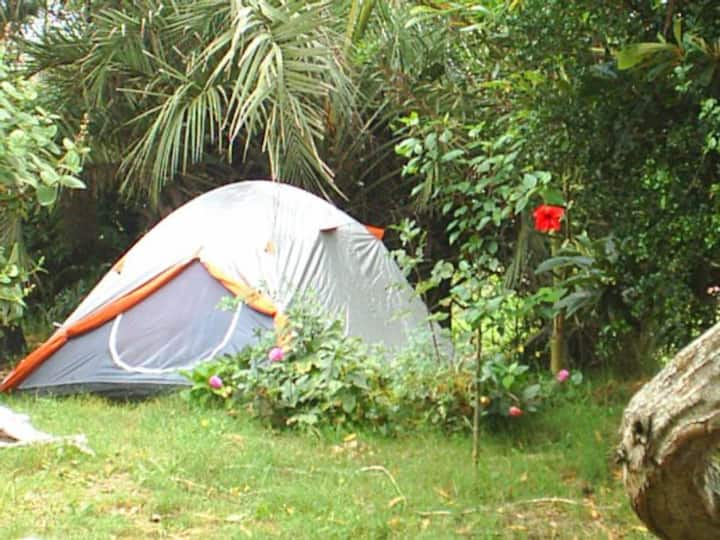 CAMPING /CARPAS VILLAINVISIBLE