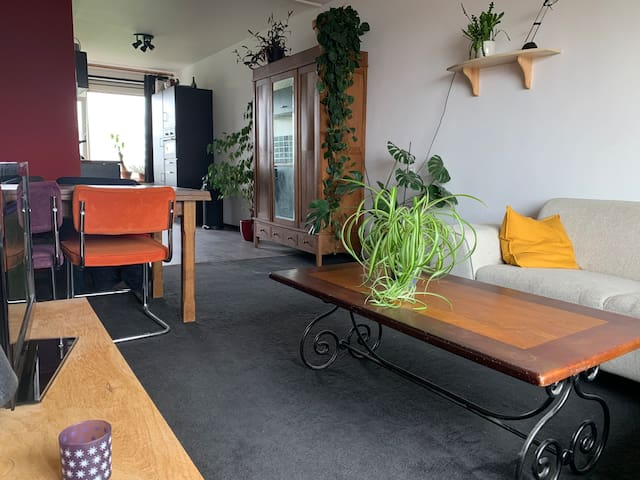 Cosy affordable appartement Rotterdam Zuid