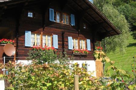 Heimelige Wohnung  im Ferienparadies,  Kandertal