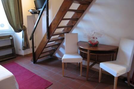 NINO MANFREDI - 公寓