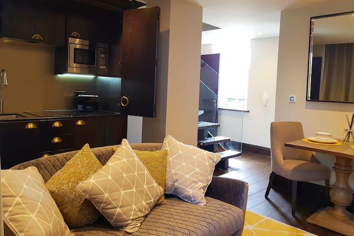 Luxury King Size Apartment 5
