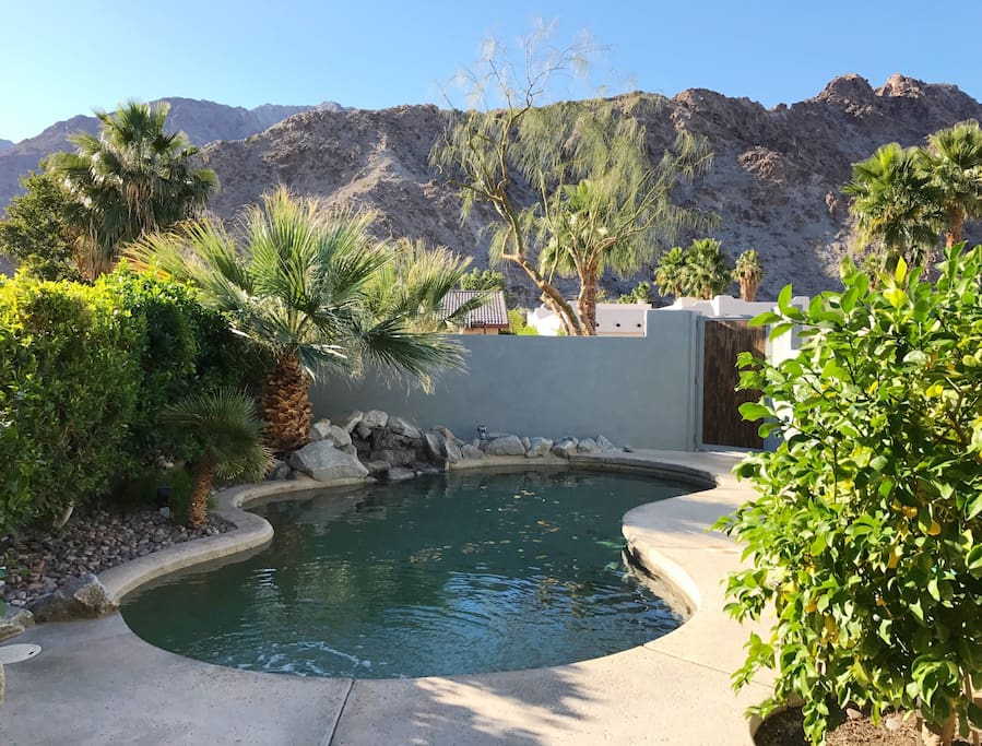 Private courtyard with pool, lush landscaping and sweeping mountain views.