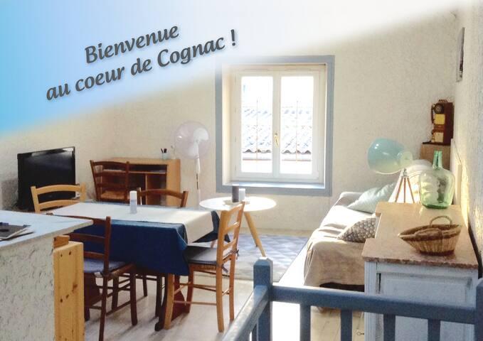 La P'tite Cognacaise, house for 4/6 people
