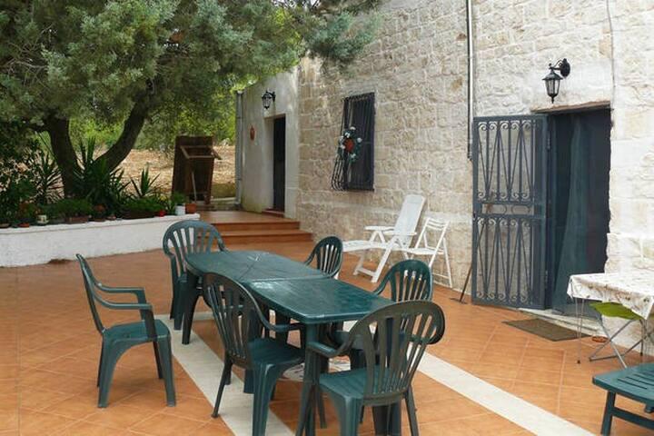 Patio antistante - patio/yard