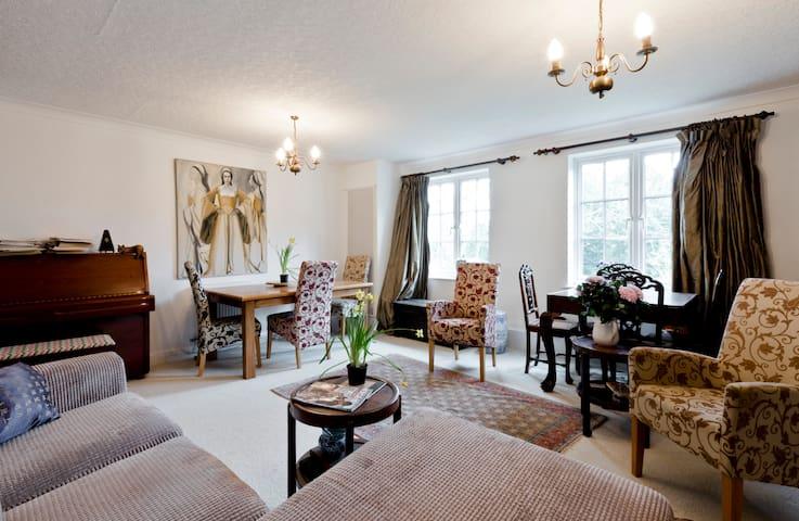 Airy double room near Hampton Court
