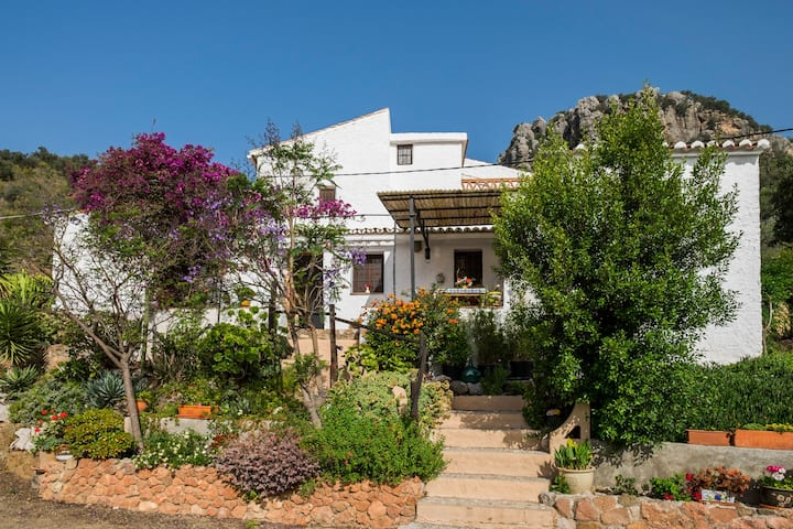 Cosy, rustic cottage in beautiful Andalucia. Pool