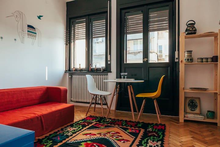 Folk Studio in Romana Square (Tache Ionescu St) - București - Apartament