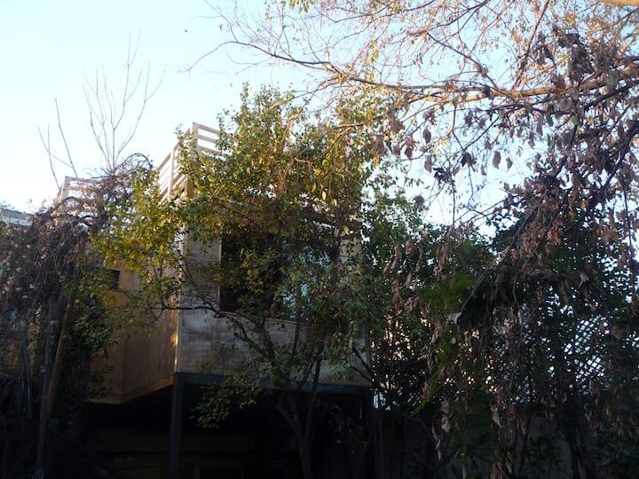Bedroom Luis, brisa de árboles.