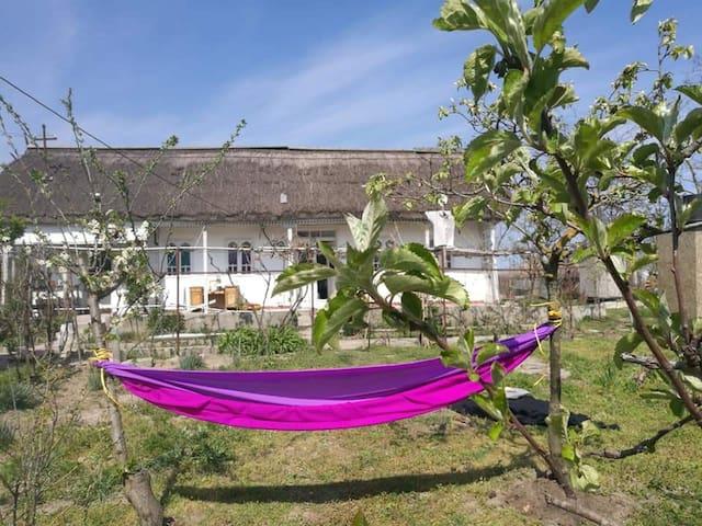 Chandra garden Danube Delta Romania