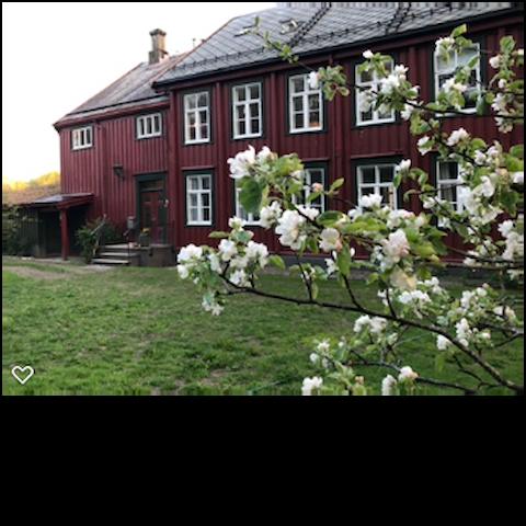 Sentralt i Trondheim - fredelig på elvebredden